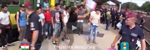 La rabbia degli immigrati bloccati in Ungheria: buttano via cibo e acqua C'è IL VIDEO ( e magari si dirà che è falso)