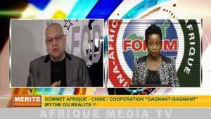 vignette Afroeurasie I